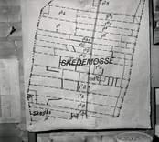 Karta över Skedemosse.