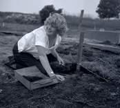 Margareta Beskow gör en arkeologisk undersökning i Skedemosse, 20 juli 1962.