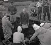 Utgrävning vid Skedemosse med kung Gustaf VI Adolf och Ulf Erik Hagberg.