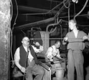 Påklippning av ben till ett vinglas.    Flygsfors glasbruk grundades av Otto Hammargren 1863 och var i drift till 1979. Man tillverkade till en början bara fönsterglas, men gick senare över till belysnings- och prydnadsglas.