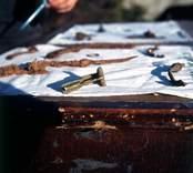 Föremål från utgrävningarna vid Skedemosse.
