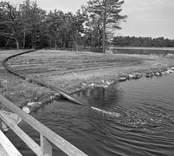Emsfors bruk är ett pappersbruk, som ligger på ön Krokö vid en fors i Emån. Det första bruket var ett handpappersbruk som startades som Skrufshult 1731 av löjtnanten Eric Rappe på södra sidan av Emån i Mönsterås socken. Det var ett av de första i Småland. 1814 anlades Emsfors handpappersbruk av köpmannafamiljen Callerström, som verkade i trakten i ungefär 170 år. Emsfors var från början även det ett enkelt handpappersbruk, men i och med industrialismen byggdes det om till maskindrift. På 1890-talet installerades sulfitkokare och sulfitbruket startades 1907. Innan sekelskiftet köpte Emsfors bruk Skrufshults pappersbruk, då revs byggnaderna och ett nytt träsliperi byggdes på samma plats. Bruket drevs sedan 1914/1915 av familjen Örn, som drev det med stor framgång. Det köptes av Klippans bruk 1965 och Södra Sveriges Skogsägares Förbund 1972, som i sin tur 1980 sålde bruket till Oskarshamns Industrilo¬kaler AB då Oskarshamns kommun gick i borgen för köpet. Beslutet att köpa och gå i borgen för bruket överklagades och Regeringsrätten fastslog att kommuner inte kan driva någon verksamhet utanför den kommunala verksamheten.  Bruket var verksamt till 1989. I dag bedrivs endast en liten verksamhet på bruket i moderna lokaler, medan det gamla bruket förfaller som ett gammalt minnesmärke över industrihistorien. Efter bruket finns också ton med pappersmassa i skogen samt en förorenad fjärd, Nötöfjärden, där kemikalierna och massan dumpades.  Från bruket gick en två kilometer lång industribana med spårvidden 600 mm till hamnen i Påskallavik. Banan öppnades 1920 och lades ner 1975.  Utsläppet som var problemet, (reningen).