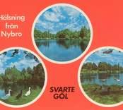 Vykort med motiv från Svartegöl i Nybro.