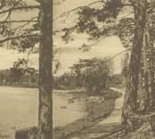 Strandvägen vid Linnéasjön i Nybro.