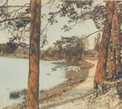 Vykort med motiv av Linnéasjön och Strandvägen.