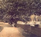 Vykort med motiv från Brunnsparken i Nybro.
