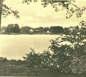Vykort med motiv från Linnéasjön.