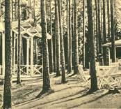 Skogsserveringen i Nybro.