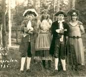 Karnevalen i Folkets park, Nybro 1925