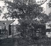 Blankaholms sågverk, förstört av brand i augusti 1946