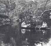 Emil Karlsson vid årorna på roddtur med sommargäster. Troligen har man varit ute och brutit löv eftersom stora ruskor ligger i båten.