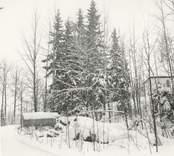 Foto från nordväst (från gamla vägen). Före avverkningen i mars 1969.