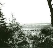 Vraket av Svix av Mariehamn, strandad vid östra sidan av Ölands norra udde 1927.