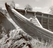 """""""Helena"""" av Väderskär, en marknadsbåt., fören och backen från babords sida."""
