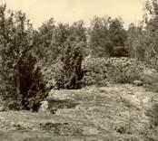"""Ett stenröse i Tångered.   """"Bergshöjd 200 m S om n.r 2 i Loftahammar, på en udde som mot S. skjuter ut i Vjevassen."""""""