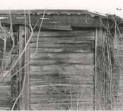 Detalj av en liggtimrad stuga i Högatorp.