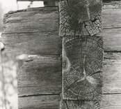 Detalj av en stuga med liggtimmer och korsknut.