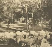 Vykort med motiv från Oskarshamns stadspark.