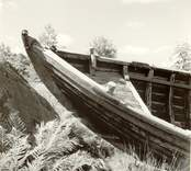 Fören på en båt med backen från babords sida.