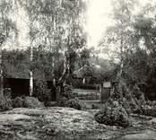 Gård i Viborg 1927.