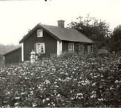 Gölstugan 1915.