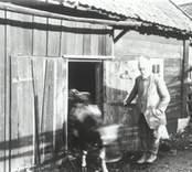 Porträtt av  Josef Klingspor i Hvilan, Falsterbo.