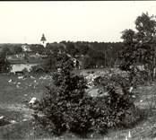 Vy över Hjorted, med fotografen Karl Ludvig Berners hem Hvilan i mitten.