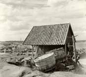 Bod med strömmingskar, tillhörande Hjalmar Gustafsson.