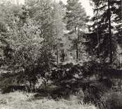 Ett röse väster om Stångeland.