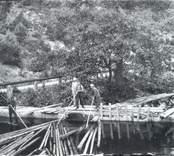 Flottning av timmer i Hjorted.
