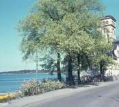 Västerviks varmbadhus, som var i drift mellan 1910-1975.