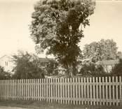"""Kyrkoherdebostället  """"Mangården från landsvägen. I mitten manbyggningen, på sidorna i symmetriskt snett läge."""