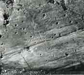 Den först kända ristningen i området, omnämnd av J.H. Rhezelius. Fyra par och tre enkla fotsulor samt ett 30-tal skålgropar.