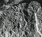 I Blekhem påträffades 1932 ett block, vars yta är täckt av ett hundratal skålgropar.