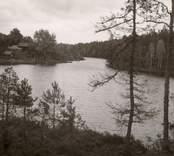 En skog och sjö mellan Falsterbo och Hjorted.