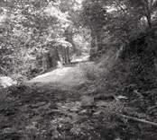 En gångstig och resterna av Norrby brunn, hälsobrunn som har haft en överbyggnad.
