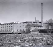 Bohman & Johanssons fanérfabrik, Blomstermåla.