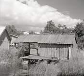 Tore Sundströms bod. Foto: 25/07 1951.