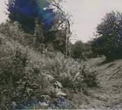 Ringhults borgruin med vallgraven från väster med fäste till vindbrygga i bakgrunden.