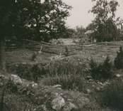 Resterna av Ringhults borgruin.