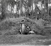 En backstuga i Påryd.