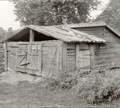 """Foto:M.Dyfverman och M Rehnberg 1937. Svinhus. """"Det var det modet på dom förr i tiden här""""."""