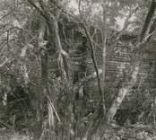 """Foto:M.Dyfverman 1937 Bod. Knuttimrad.Längd mellan knutar ca 5,5m. Bredd mellan knutar ca 3,80m. Sedd från sydväst. Ägare:Valfrid Johansson, Kristineberg. F.d. """"August Karlssons hus med plan""""(tomt)."""