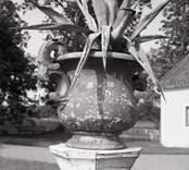 Krukäxt i urna vid en gård i Maltebo.