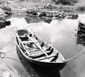 Skjutöka (30år) , tillhör Isak Andersson. Foto: 17/08 1957.