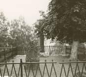 Småland Hälleberga socken Hälleberga kyrkogård  Taubes gravvård.