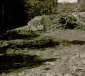 Arkeologisk undersökning Boplats C:1 före undersökning. Från öster.
