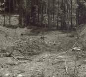Arkeologisk undersökning  Boplats C:1 före undersökning. Från nordväst.