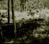 Arkeologisk undersökning  Boplats C:1 före undersökning. Från sydost.