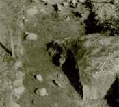 Arkeologisk undersökning  Boplats C:1. Nordvästra delen av schakt (nordväst-sydost) från sydost.